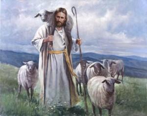 good.shepherd